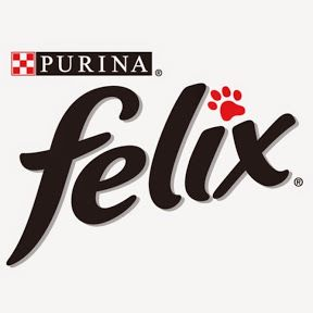 purina_felix