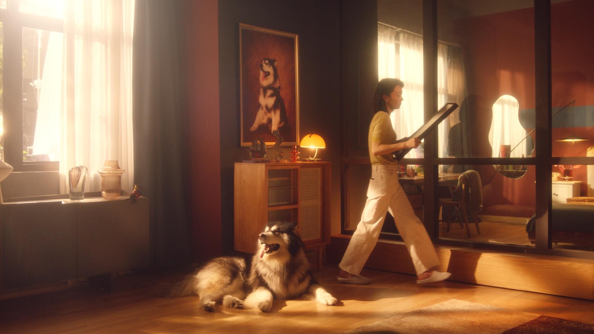 「Dir」Dog-BMW-金女士和狗狗