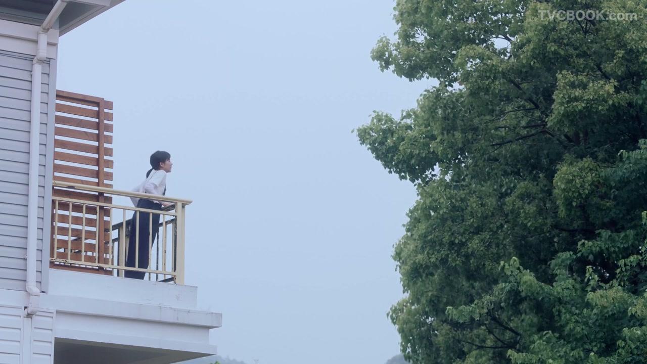 渍无踪Vanish   阳台日记